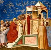Введение Богородицы во храм (Джотто)