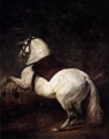 Белая лошадь. 1634